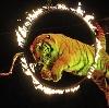 Цирки в Шелехове